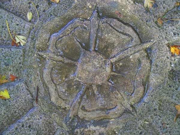 grosses Bild zeigen: Lippische Rose in Stein
