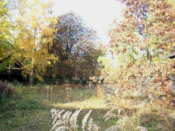 grosses Bild zeigen: Idylle in der Herbstsonne